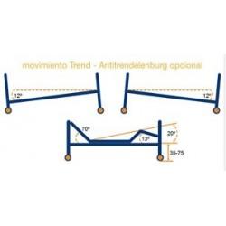 características cama electrica articulada Teide