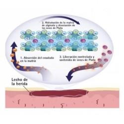 aplicación askina calgitrol paste parafarmic