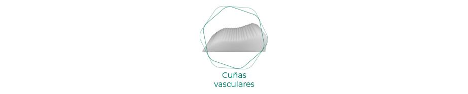Cuñas vasculares