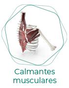 Calmantes musculares