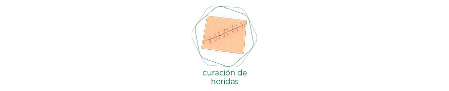 Productos Curación de heridas